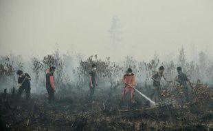 Des habitants luttent les incendies de forêts, le 27 octobre 2015 dans les environs de Palangkaraya, en Indonésie