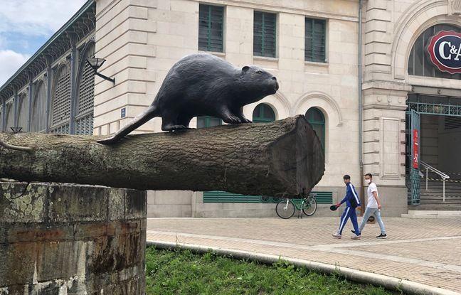 Un castor en bronze est à découvrir porte Sauvetout à Nantes