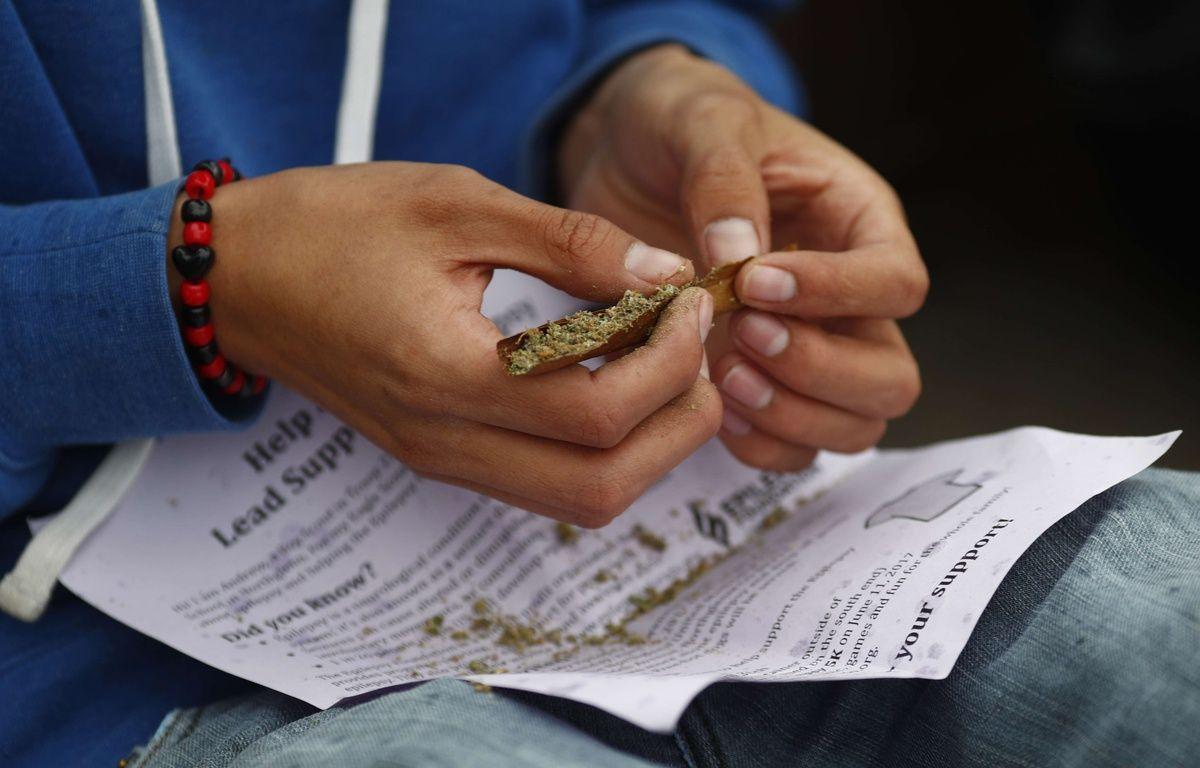 Illustration de cannabis. – David Zalubowski/AP/SIPA