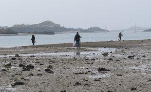 Pêcheurs à pied sur l'archipel de Chausey le 19 mars 2015.