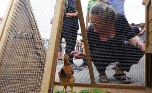 Laurence Thiebaut et son association VIE fourniront 40 poules à des familles vençoises.