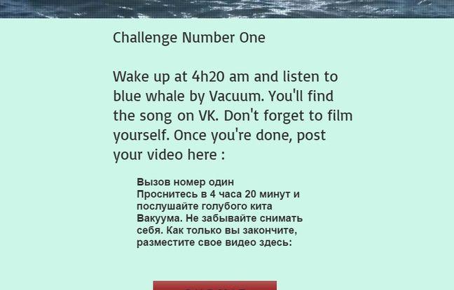 La première page du faux site de «Blue Whale Challenge»