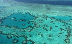 Vue aérienne de la Grande Barrière de corail, près des côtes du Queensland en Australie, le 20 novembre 2014