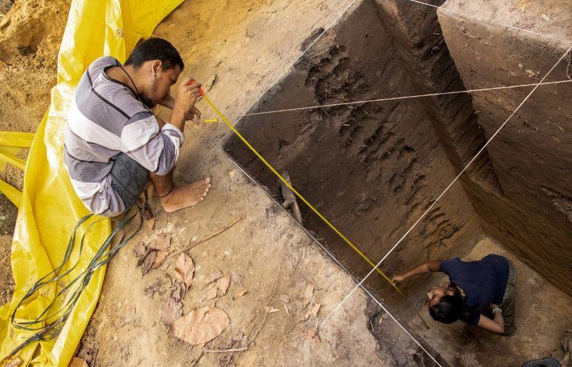 Brésil : Des archéologues découvrent que l'Amazonie n'est peut-être pas si vierge que ça