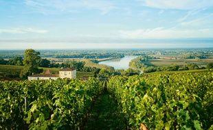 Au coeur des vignobles bordelais, à la rencontre de vignerons passionnés ou au bord du Bassin d'Arcachon, l'été se prolonge au fil du rosé.