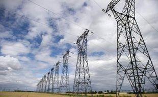 La facture énergétique de la France a battu son record en atteignant 61,4 milliards d'euros l'an passé, près de quatre fois plus qu'il y a vingt ans, une responsabilité qui incombe à plus de 80% au pétrole, selon un rapport publié jeudi.