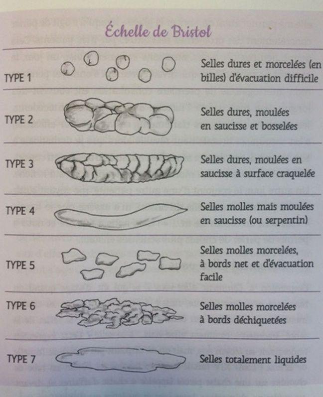 Le tableau de Bristol répertorie plusieurs types de selles.