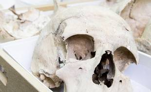 Un crâne humain. Illustration.