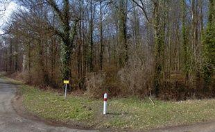 Le bois de Retz, dans l'Aisne, où a eu lieu le drame.