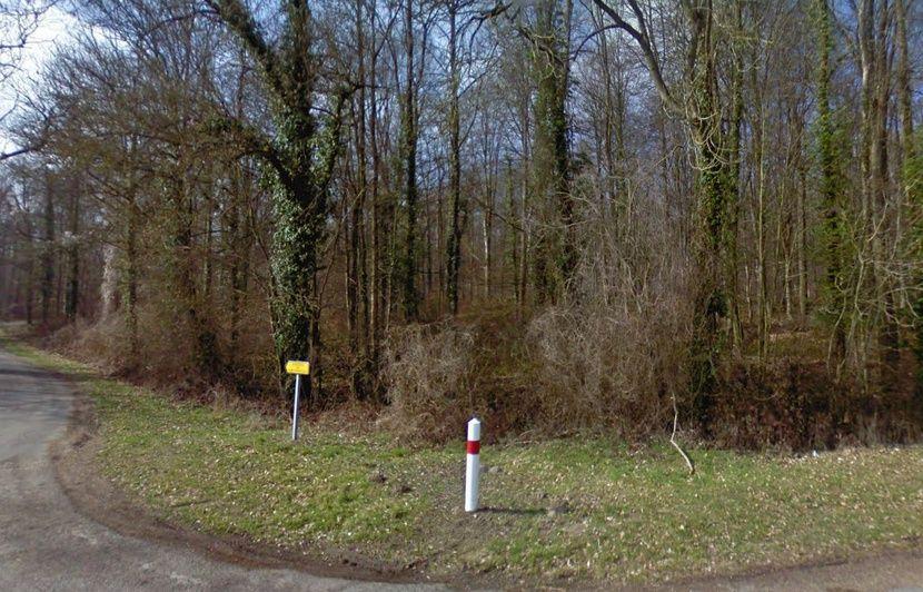 Aisne : La femme enceinte, retrouvée morte, a bien été tuée par des chiens