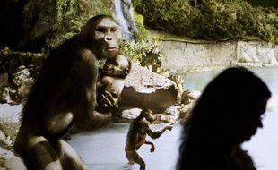 Sculptures représentant des hominidés bipèdes «australopithecus afarensis» au Musée des sciences naturelles de Houston, au Texas, en 2007.