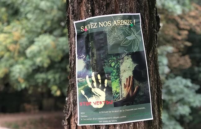 Nantes: «Menacé de mort» après l'abattage d'arbres, le maire de Vertou porte plainte