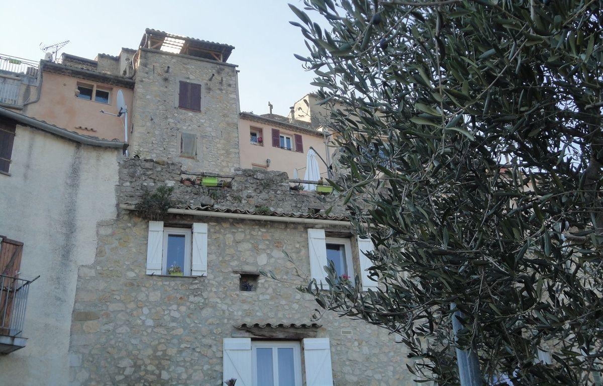 La commune du Broc a trouvé son mode de chauffage grâce aux oliviers.  – M. Frénois / ANP / 20 Minutes