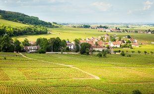 Les «Climats» des vignobles de Bourgogne, délimitées sur les pentes de la côte de Nuits (ici, Musigny) et de Beaune, ont intégré le patrimoine mondial de l'humanité de l'Unesco le 4 juillet 2015.
