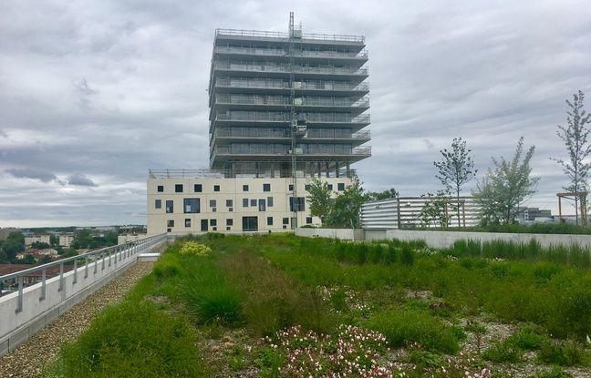 Pour proposer plus d'espaces verts, le quartier Euratlantique privilégie notamment les toitures végétalisées.