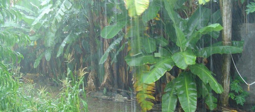 La saison des pluies à Mayotte (illustration).