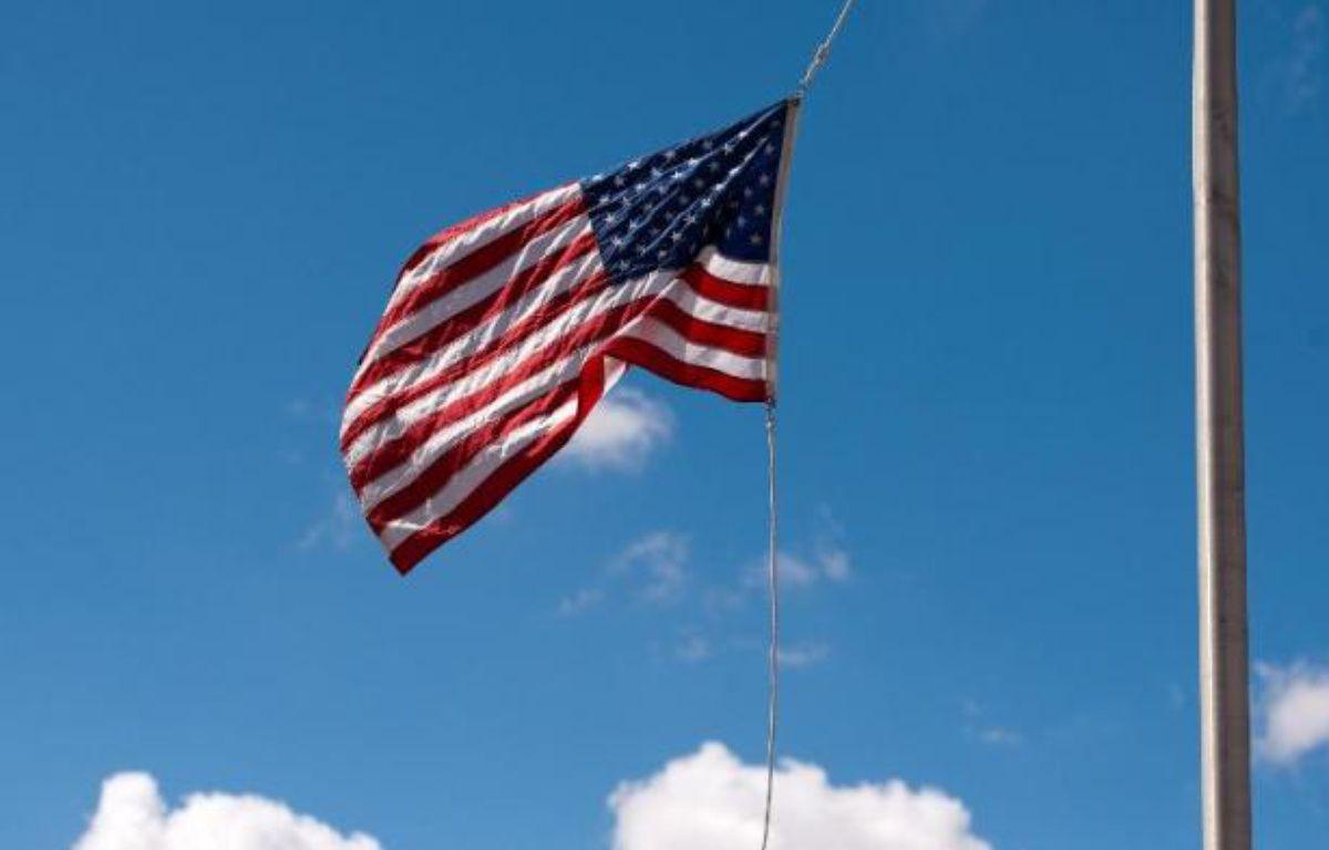 Le drapeau américain. – Leon Neal AFP