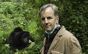 Bernard de La Villardière à la découverte des grands singes