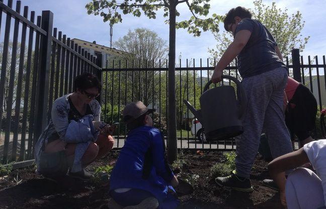 Premières plantations et premiers arrosages pour les enfants dans le jardin santé du Carré vert à Strasbourg.