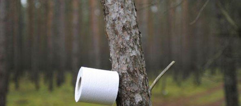 Illustration d'un rouleau de papier hygiénique dans une forêt.