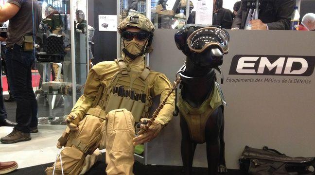 Salon milipol l 39 quipement sur mesure des chiens de combat for Salon milipol