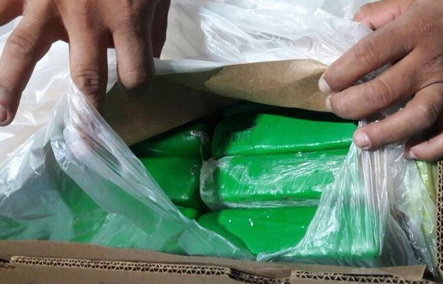 nouvel ordre mondial | Colombie: La cargaison de bananes cachait 1,6 tonnes de cocaïne