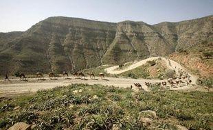 """L'Ethiopie a indiqué jeudi qu'elle étudiait comment """"répondre à l'attaque"""" qu'elle attribue à son voisin érythréen, après la mort de cinq touristes européens et l'enlèvement de plusieurs autres près de la frontière avec l'Erythrée."""