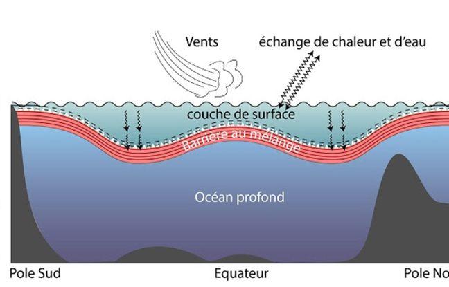Schéma idéalisé de la structure verticale de l'océan mondial.