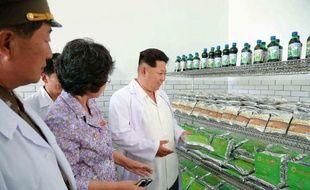 This undated photo released by North Korea's official Korean Central News Photo non datée, diffusée par l'agence officielle nord-coréenne KCNA le 6 juin 2015, montrant le leader nord-coréen Kim Jong-Un visitant un institut biotechnique à Pyongyang