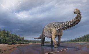 Une illustration de l'Australotitan cooperensis, nouvelle espèce de dinosaure.