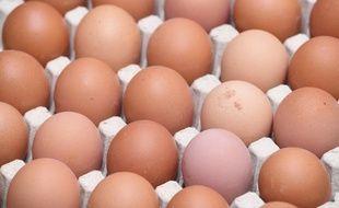 Des œufs de la marque Les Poulettes ont été retirés de la vente et doivent être rapportés au magasin (image d'illustration).