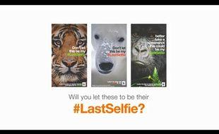 WWF lance une campagne de sensibilisation via SnapChat