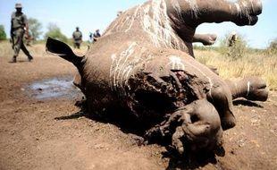 Un rhinocéros de trois jours tué à Houtboschrand en Afrique du Sud le 27 novembre 2013