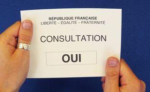 Les électeurs de Loire-Atlantique ont dit «oui» au projet d'aéroport de Notre-Dame-des-Landes le 26 juin 2016.