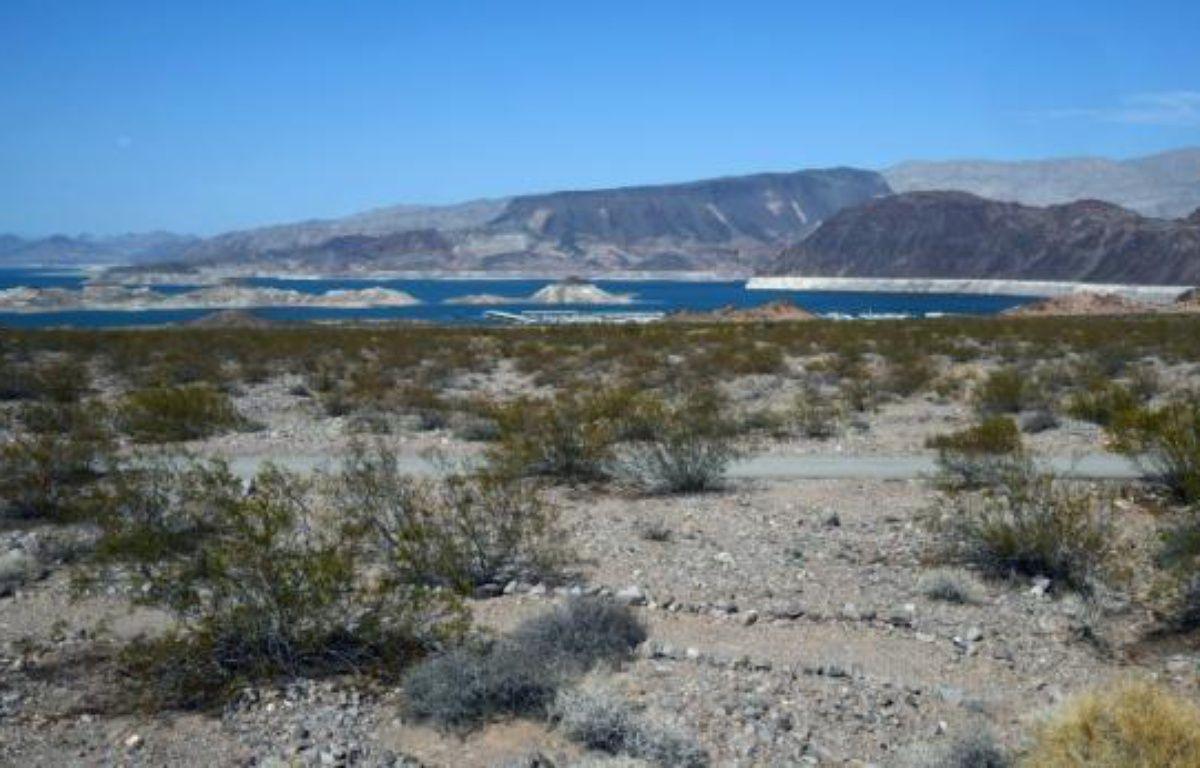 Un couple de touristes français sont décédés alors qu'ils randonnaient dans le désert du Nouveau-Mexique avec des températures élevées – Ethan Miller GETTY IMAGES NORTH AMERICA