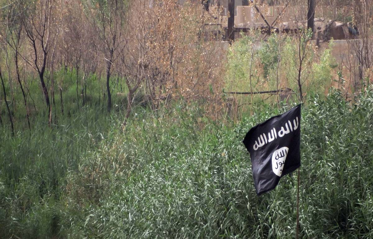Illustration: Le drapeau de Daesh. – AP/SIPA