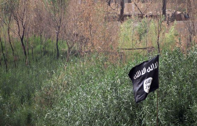 nouvel ordre mondial   Un djihadiste allemand, ancien rappeur, tué en Syrie