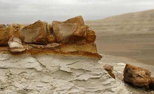 Un groupe de paléontologues péruviens a prévenu que le rallye Dakar 2013 menace d'infliger de nouveaux dommages à des vestiges paléontologiques datant de plus de 20 millions d'années dans la région de Ica (sud), où la célèbre compétition avait déjà causé des destructions considérables l'an dernier.