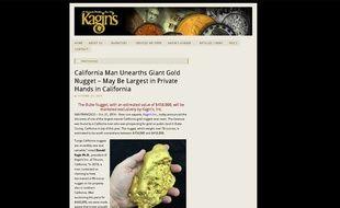 Capture d'écran du site Kagin's Inc. montrant la pépite géante découverte en Californie en juillet 2014 et mise en vente le 23 octobre 2014.