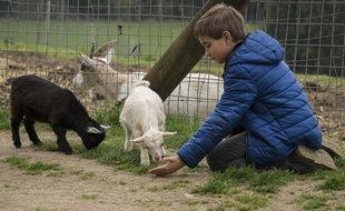 Et si vous profitiez das vacances pour emmener vos enfants à la ferme?