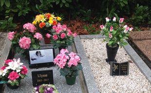 Les tombes sont régulièrement fleuries par les maîtres des animaux défunts.