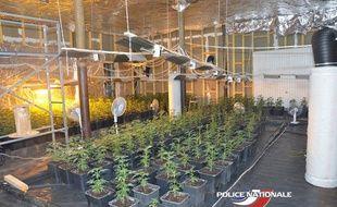 Le hangar où les plants de cannabis ont été trouvés se situe à Tourcoing