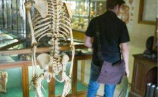Le musée d'anatomie propose une soirée squelette.