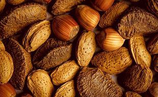 Consommer quotidiennement des « fruits à coque » pourrait s'avérer bénéfique pour la santé