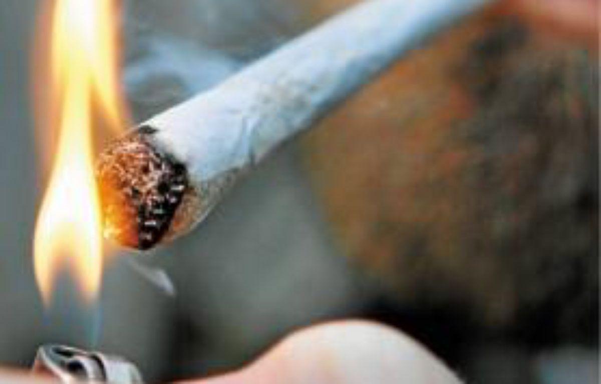 De nombreux nordistes allaient se fournir en cannabis aux Pays-Bas. –  M. Libert / 20 Minutes