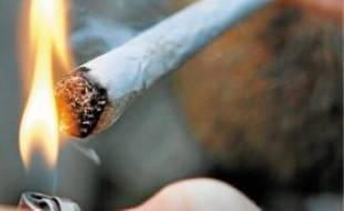 De nombreux nordistes allaient se fournir en cannabis aux Pays-Bas.