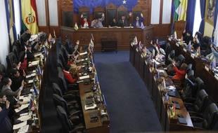 Le sénat bolivien approuve une loi pour la tenue de nouvelles élections, à La Paz, le 23 novembre 2019.