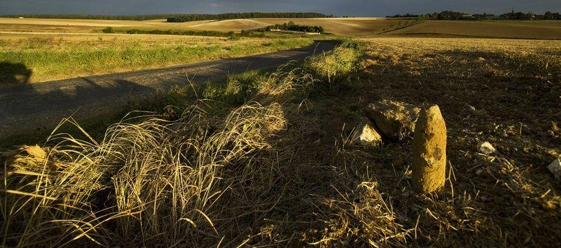 Illustration d'un ancien champ de bataille, dans la Somme, où les touristes anglais ont l'habitude de se rendre.