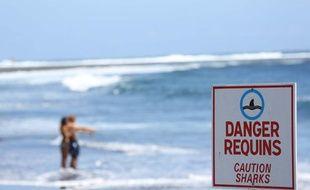 Un homme de 24 ans a été victime d'une attaque de requin au large de l'Etang-Salé à la Réunion le 26 octobre 2013.