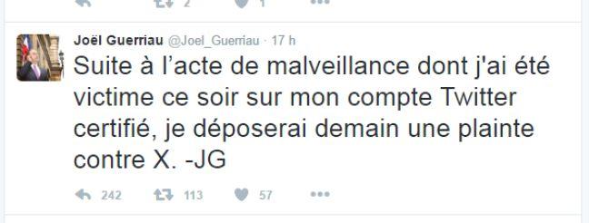 Capture d'écran du compte Twitter de Joël Guerriau.